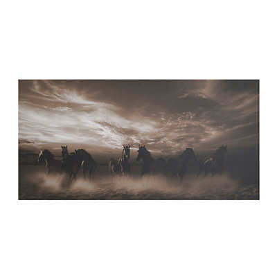 Wild Stampede Canvas Art Print