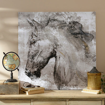 Black and White Horse Canvas Art Print