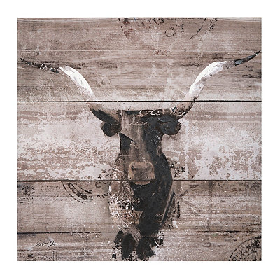 Black and White Bull Canvas Art Print
