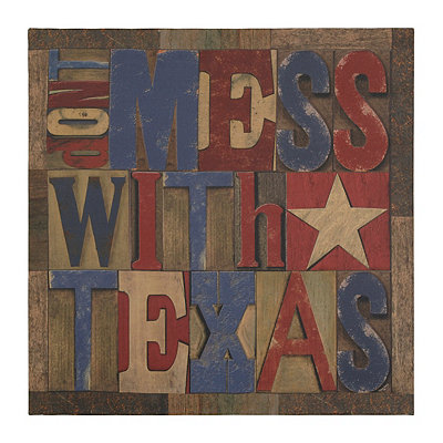 Don't Mess with Texas Canvas Art Print