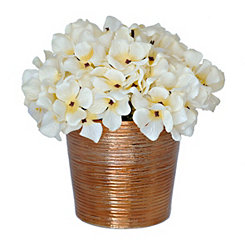 White Hydrangea Arrangement with Bronze Pot