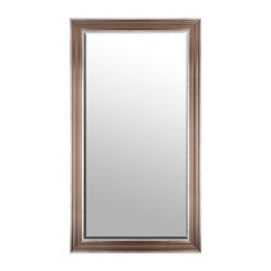 Light Bronze Framed Mirror, 38x68 in.