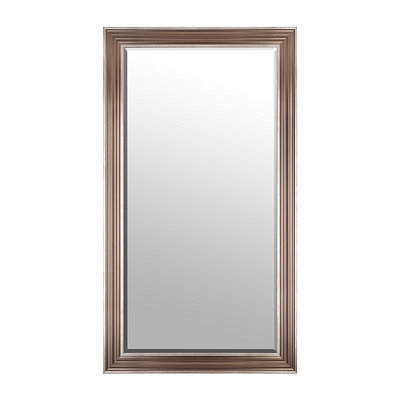 Light Bronze Framed Mirror, 37.5x67.5
