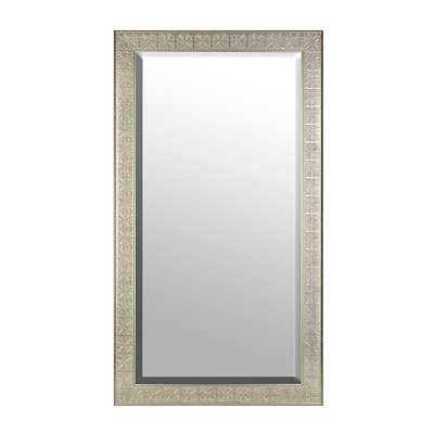 Silver Medallion Framed Mirror, 38x68 in.