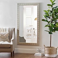 Silver Medallion Framed Mirror, 37.5x67.5 in.