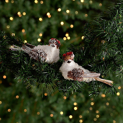 Rustic Frosty Bird Clips, Set of 2