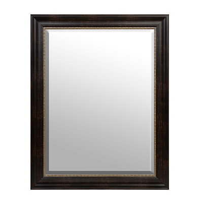 Tortoise Gold Trim Framed Mirror, 37.5 x 47.5