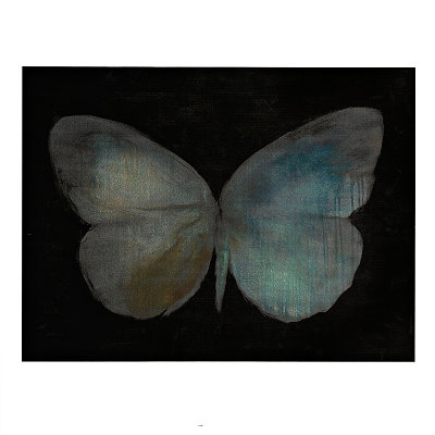 Flutter Butterfly Canvas Art Print