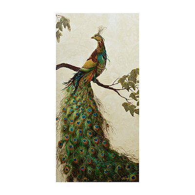 Peacock Tapestry II Canvas Art Print
