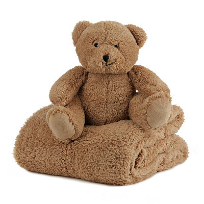 Plush Brown Bear & Blanket Gift Set