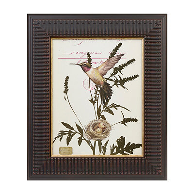 Botantical Atelier IV Framed Art Print