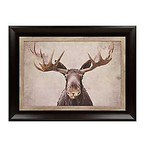 Big Moose Framed Art Print