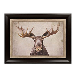 Big Moose Framed Art Print
