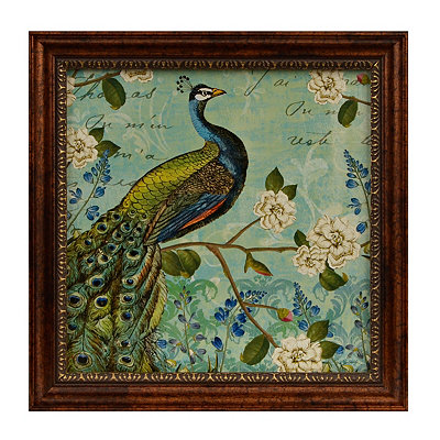 Peacock Arbor I Framed Art Print
