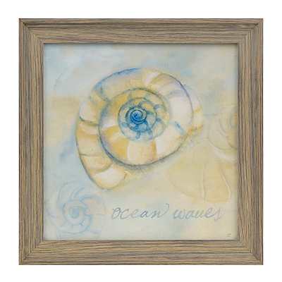 Watercolor Shells III Framed Art Print