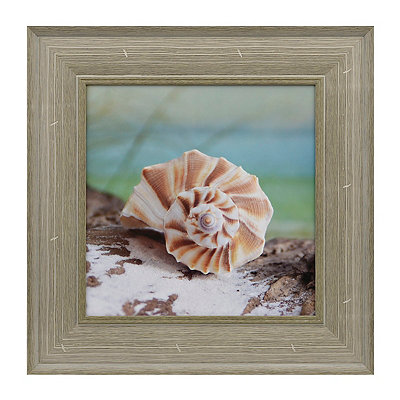 Seashells and Driftwood I Framed Art Print