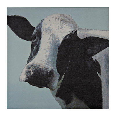 Wildlife Cow Canvas Art Print