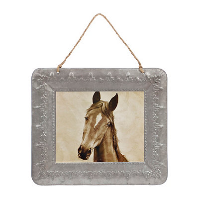 Curious Horse Framed Art Print