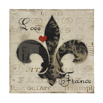 Love France Fleur-de-Lis Canvas Art Print