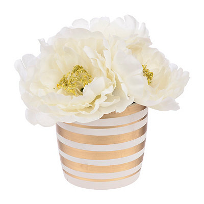 Ivory Peony Arrangement in Gold and White Pot
