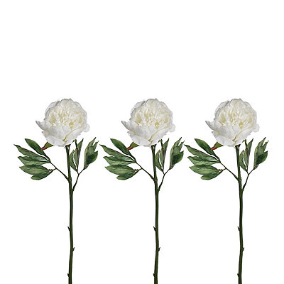 White Peony Stems, Set of 3