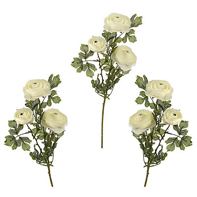 Cream Ranunculus Stems, Set of 3