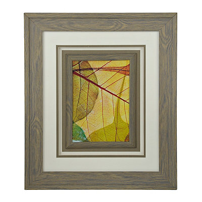 X-Ray Leaves I Framed Art Print