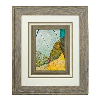 X-Ray Leaves II Framed Art Print