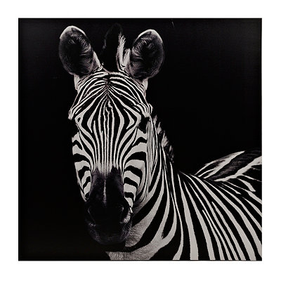 Black and White Zebra Canvas Art Print