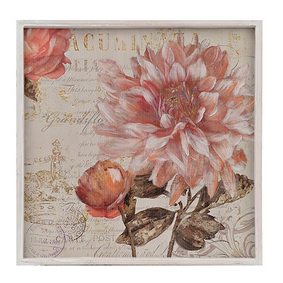 Coral Dahlias II Framed Art Print