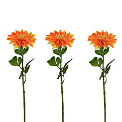 Orange Dahlia Stems, Set of 3