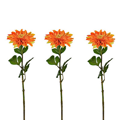 Orange Dahlia Stems, Set of 3