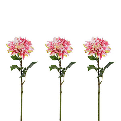Pink Dahlia Stems, Set of 3