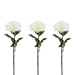 White Dahlia Stems, Set of 3