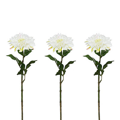 White Dahlia Stems, Set of 3
