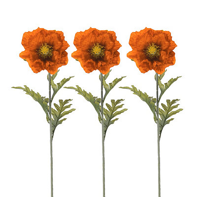 Orange Poppy Stems, Set of 3