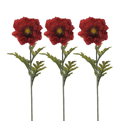 Red Poppy Stems, Set of 3