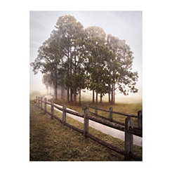 Country Journey II Canvas Art Print