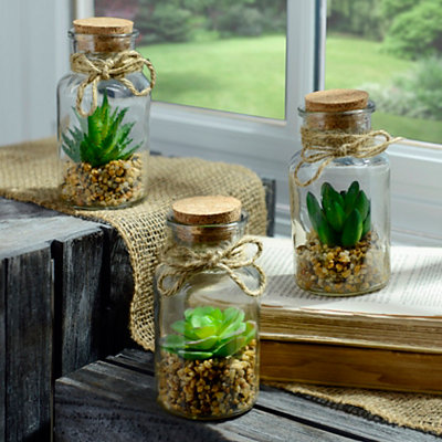 Corked Glass Succulent Arrangements, Set of 3