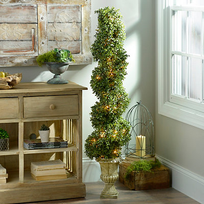 Pre-Lit Spiral Boxwood Topiary, 54 in.