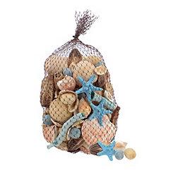 Blue Seashell Filler