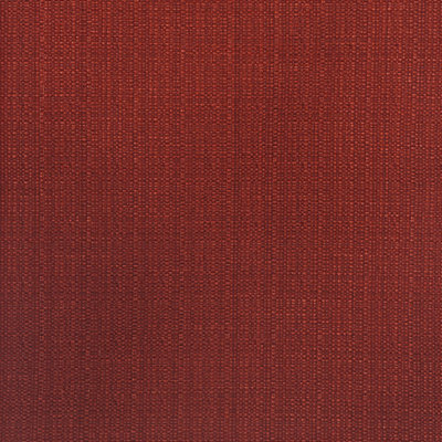 Red Flame Fabric Swatch