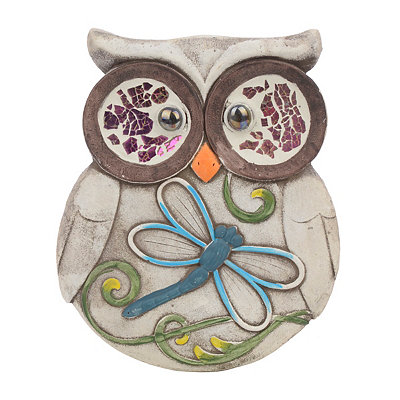 Owl Dragonfly Stepping Stone