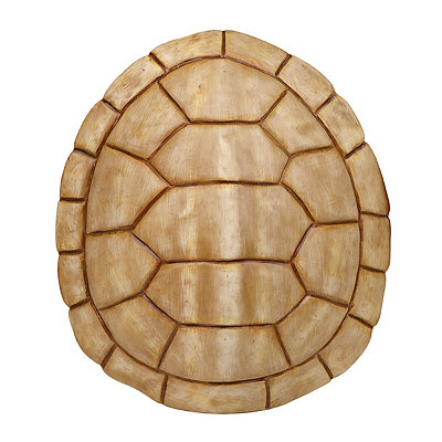 Ivory Faux Turtle Shell Wall Plaque