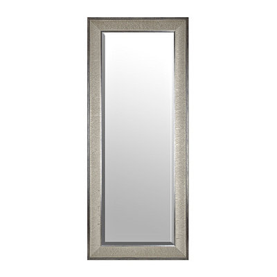Silver Graphite Framed Mirror, 33x79 in.