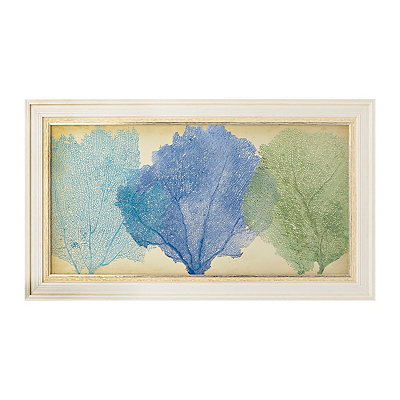 Coral Fan Trio Framed Art Print