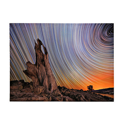 Time Lapse Stars II Canvas Art Print