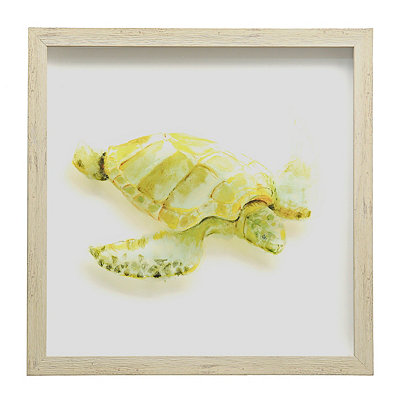 Watercolor Turtle Shadowbox