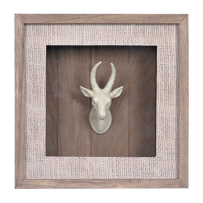 Big Game Mounted Gazelle Shadowbox