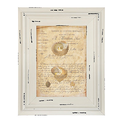 Tan Vintage Coastal Shells Framed Art Print